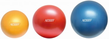 Xenios Professional Gym Ball